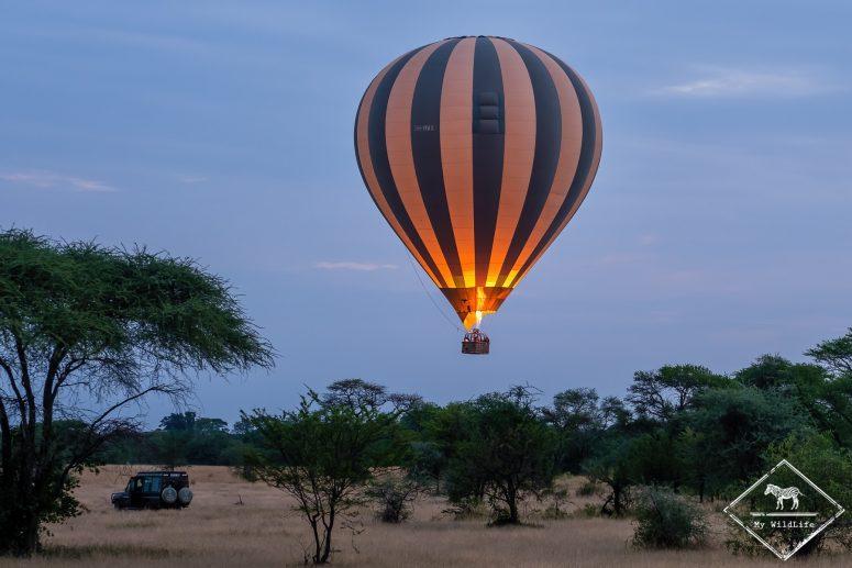 Montgolfière, Serengeti