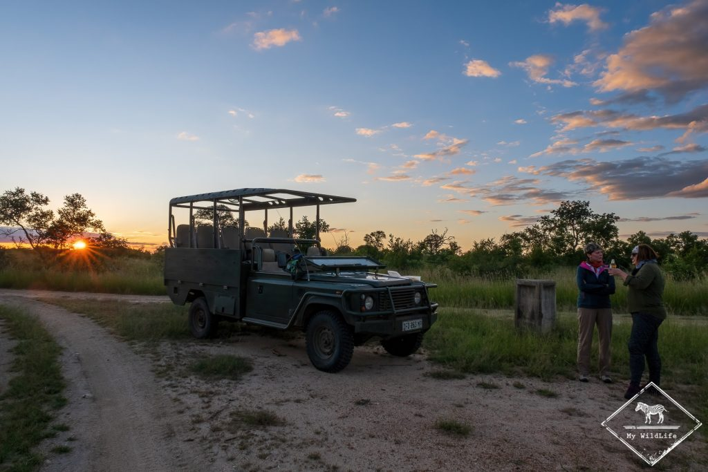 Pause safari, Manyeleti Game Reserve