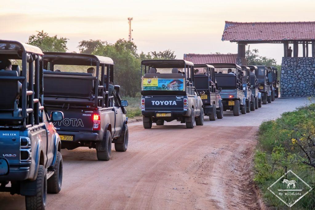 File indienne de voiture pour sortir du bloc 1 du parc national de Yala