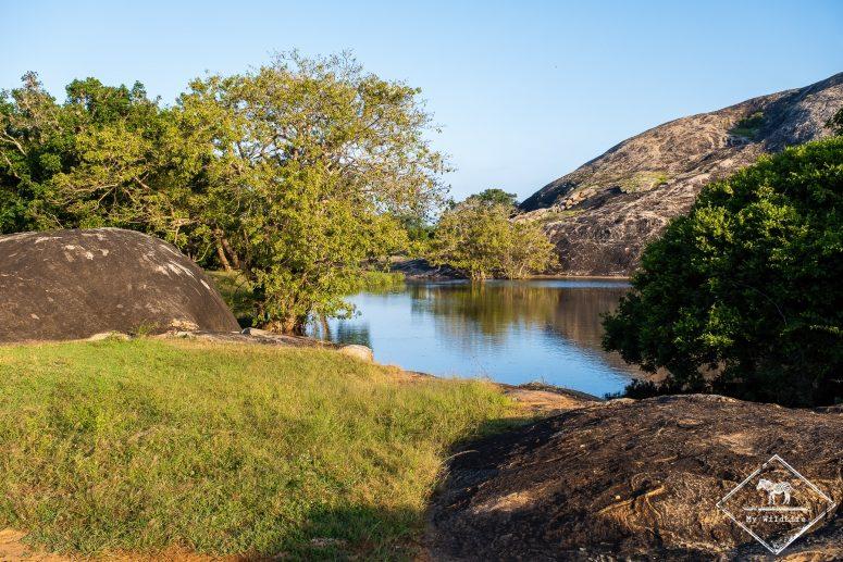 Paysage du parc national de Yala
