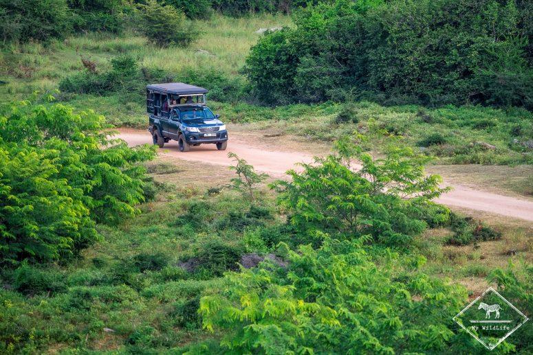 Safari parc national de Yala bloc 5