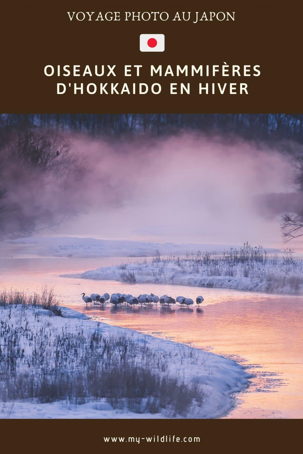 Voyage Photo à Hokkaido