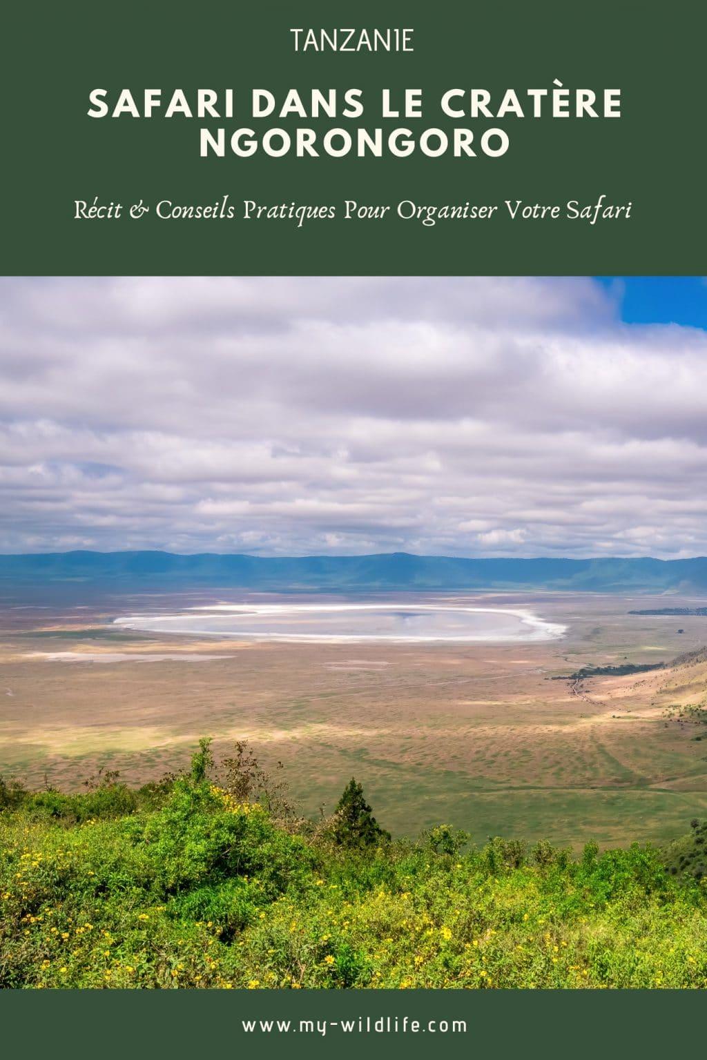 Cratère Ngorongoro, Tanzanie