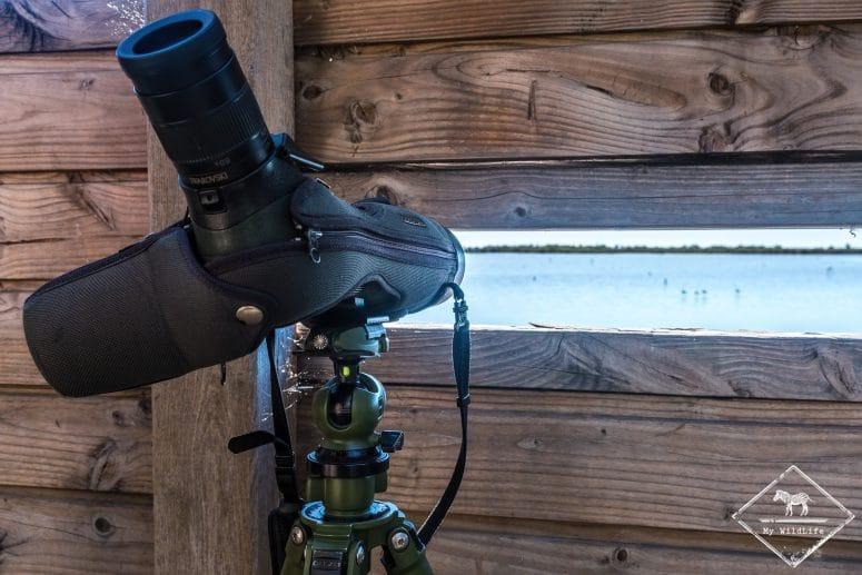 Observation des oiseaux, Marais du Vigueirat