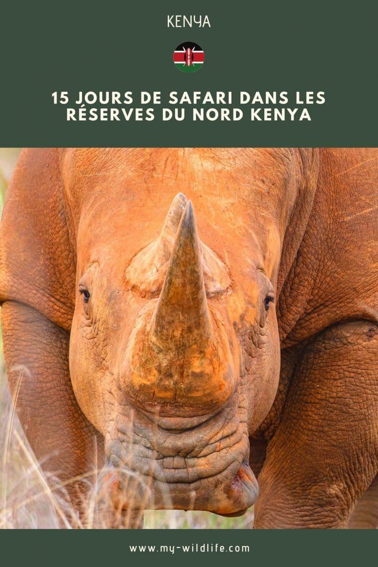 Partage mon article sur le Kenya sur Pinterest