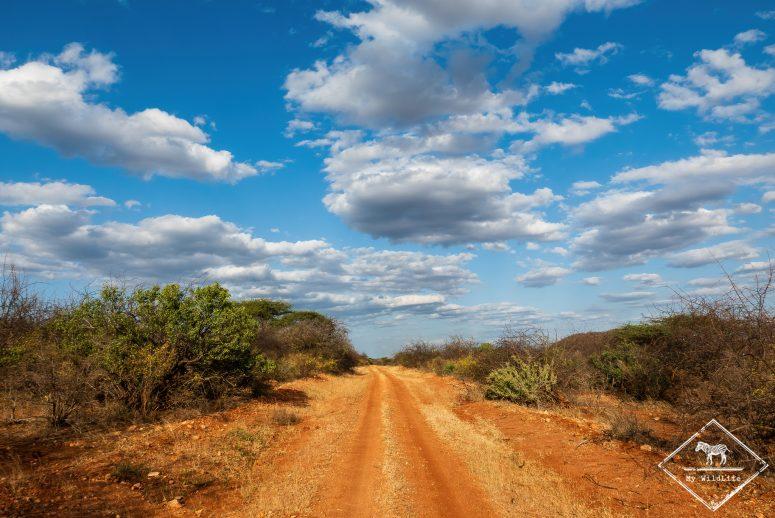 Piste parc national Tsavo Ouest