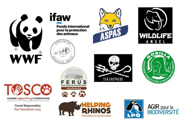 10 associations à soutenir pour la protection des animaux sauvages