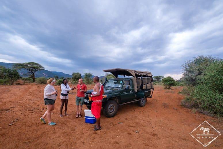 Pause safari