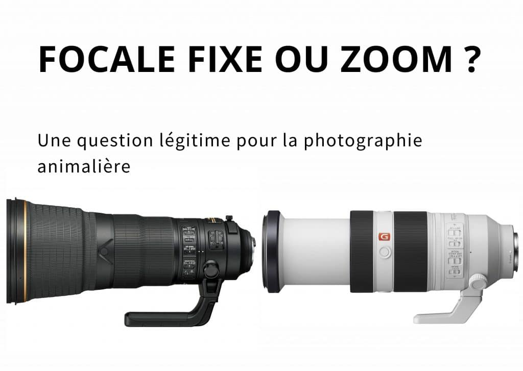 Focale Fixe ou Zoom ?
