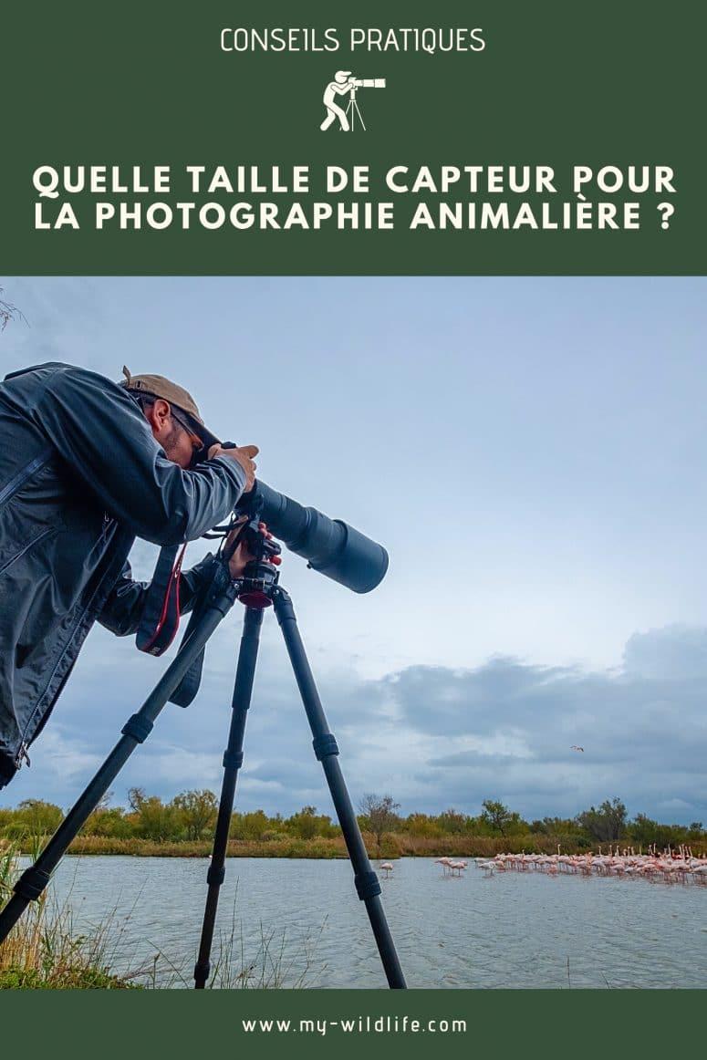 Zoom ou focale fixe pour un safari ?