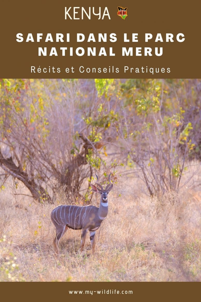Parc national Meru