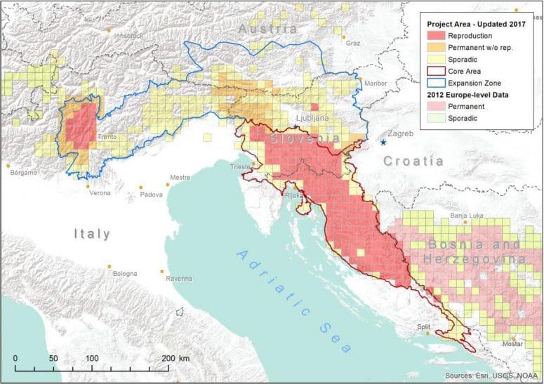 Carte de la distribution des ours bruns en Slovénie