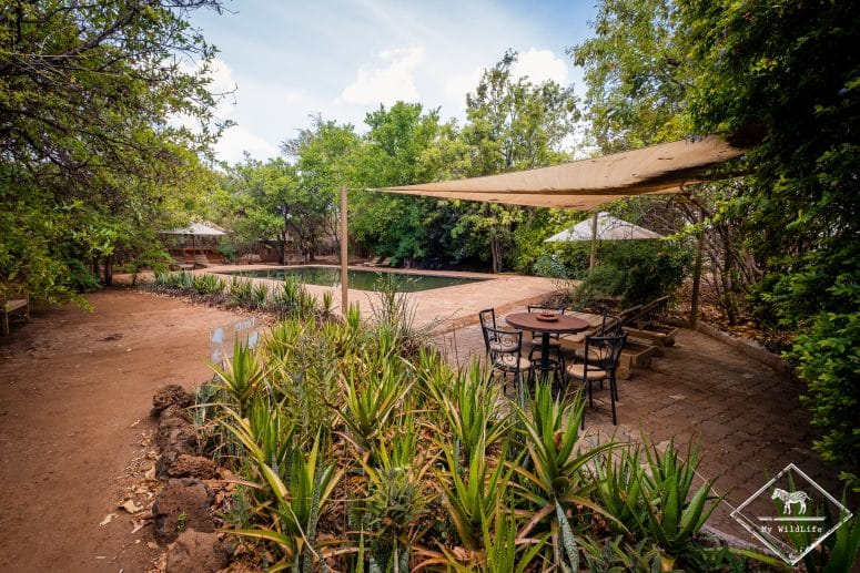 Piscine de l'Ikweta Safari Camp
