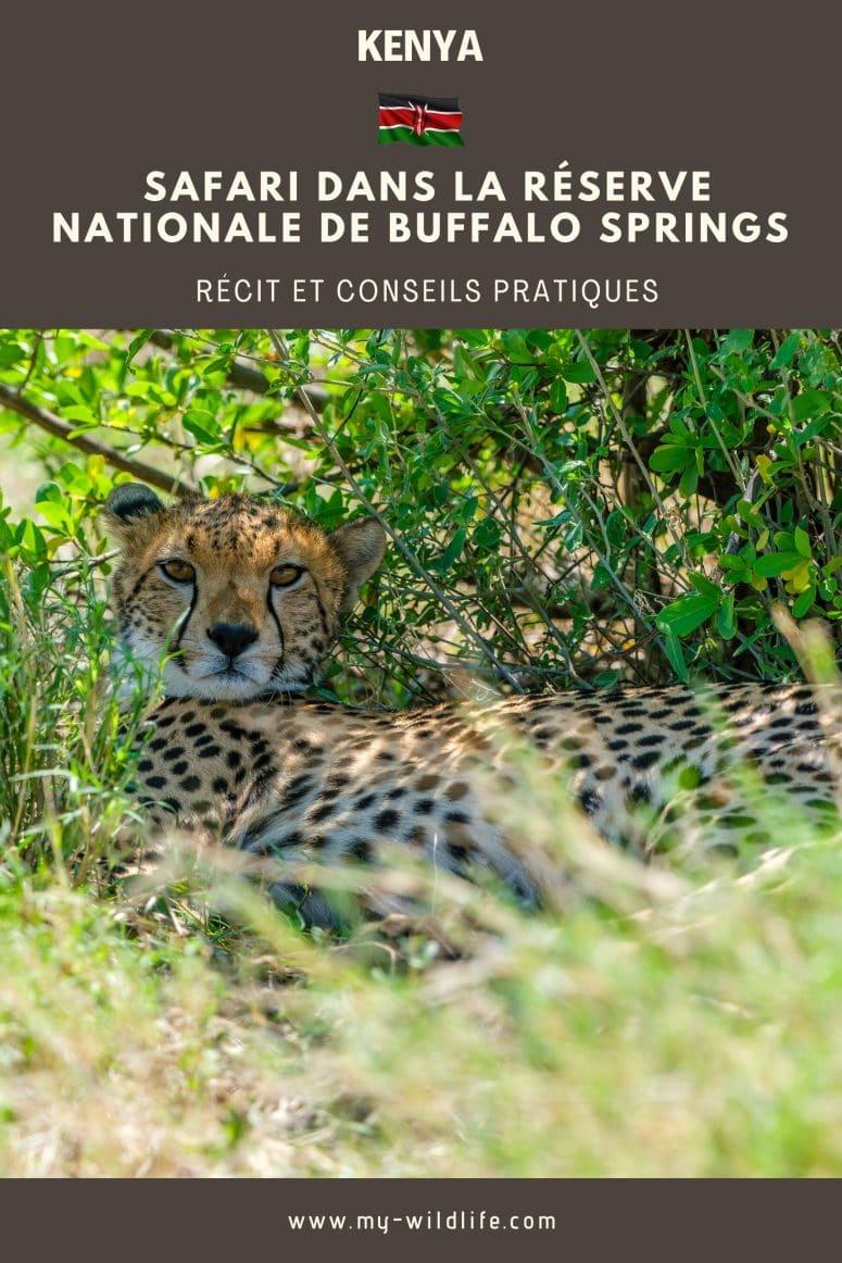 Réserve nationale de Buffalo Springs