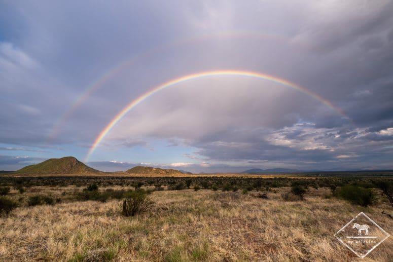 Arc-en-ciel à Samburu