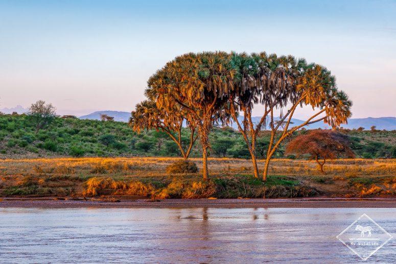 Rivière Ewaso Ng'iro, Samburu