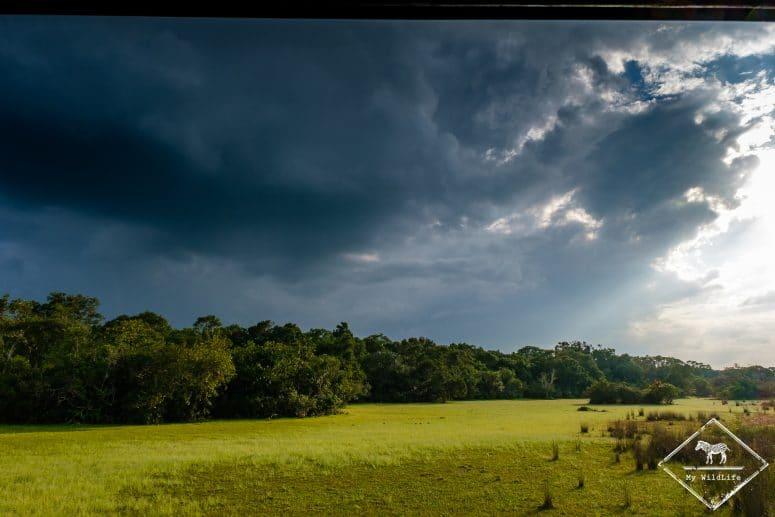 Parc national Wilpattu