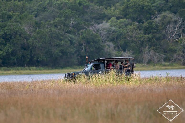 Safari, parc national Wilpattu