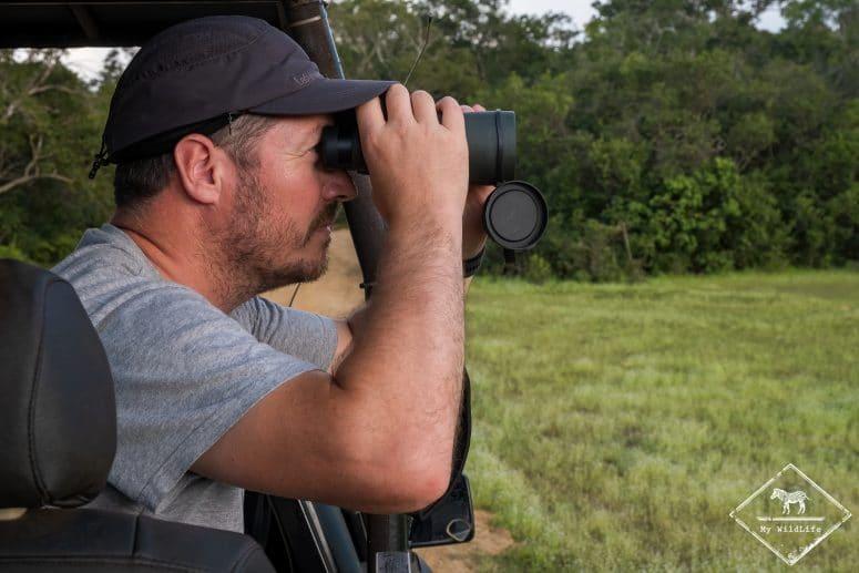 Observation du léopard aux jumelles