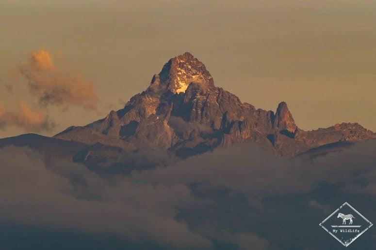 Mont Kenya depuis la Ol Pejeta Conservancy