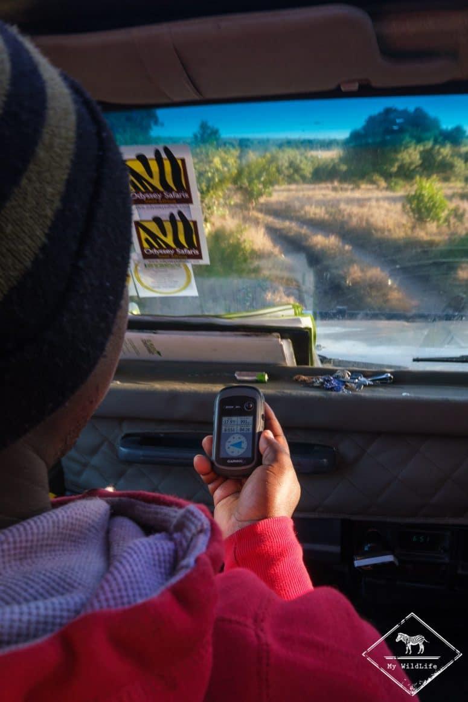 Tracking des lions avec le GPS, Ol Pejeta Conservancy