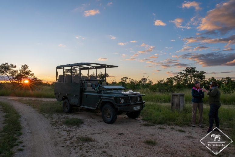 Pause safari, réserve de Manyeleti